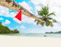 Sombrero rojo de Papá Noel en la palmera en la playa tropical exótica Fotos de archivo