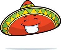 Sombrero Smiling Royalty Free Stock Image