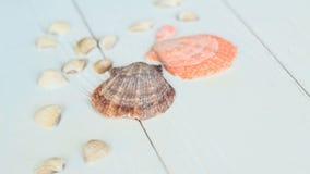 Sombrero y conchas marinas de paja en fondo de madera Foto con el lugar para el texto Imagen de archivo