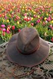 Sombrero y tulipanes Fotos de archivo