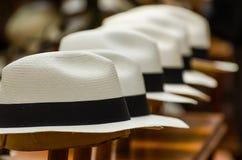 Sombreros de Panamá Imagenes de archivo