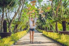 Sombreros turísticos y vietnamitas de la mujer joven Viaje alrededor del concepto de Vietnam imagen de archivo
