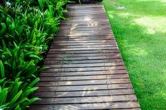 Sombrilla de madera en un jardín del centro turístico Imágenes de archivo libres de regalías