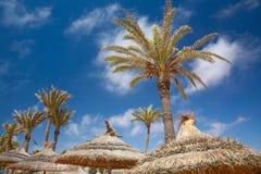 Sombrillas y palmeras cubiertas con paja imágenes de archivo libres de regalías