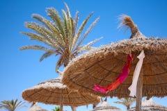 Sombrillas y palmeras cubiertas con paja fotografía de archivo libre de regalías