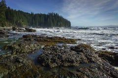 Sombrio Wyrzucać na brzeg, Juan De Fuca Wlec, Vancouver wyspa, Brytyjski Col Zdjęcia Stock