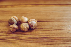 Some acorns on the wooden table. There are some acorns on the wooden table royalty free stock image