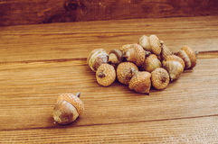 Some acorns on the wooden table. There are some acorns on the wooden table stock photo