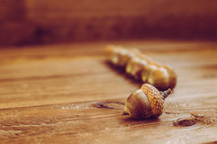 Some acorns on the wooden table. There are some acorns on the wooden table Stock Photography