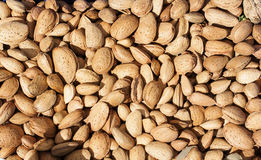 Some almonds at street market. Image of some almonds at street market Stock Photo