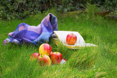 Some apples, book and blanket. On the green grey on the spring chilly day Stock Photos