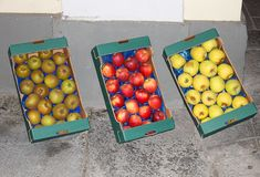 Apples of different colours in the boxes Royalty Free Stock Photos