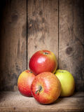 Some apples Stock Photography
