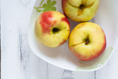 Some apples in the plate Royalty Free Stock Photography