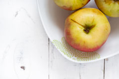 Some apples in the plate Royalty Free Stock Image