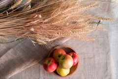 Some apples in wooden plate on a linen tablecloth with burlap and ears of wheat. Lit by the sun light royalty free stock images