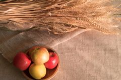 Some apples in wooden plate on a linen tablecloth with burlap and ears of wheat. Lit by the sun light stock photo