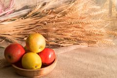 Some apples in wooden plate on a linen tablecloth with burlap and ears of wheat. Lit by the sun light royalty free stock photo
