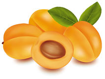 Some apricots. Royalty Free Stock Images