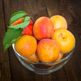 Some apricots in a bawl. Some ripe apricots in a glass bowl on a wooden table Selective fokus Royalty Free Stock Photos