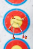 Some arrows. In the center of the target with shallow depth of field focus on the plumage Royalty Free Stock Image