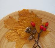 Some autumn leaves. And berries on a plate royalty free stock photos