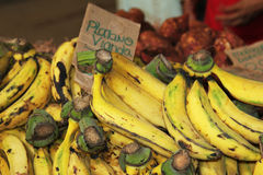 Some bananas on display. Some banana in the counter Cuban market exposure Stock Image