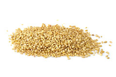 Some barley grains Royalty Free Stock Images
