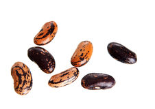 Some beans Royalty Free Stock Photography