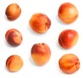 Some beautiful juicy nectarines. Storyboard of beautiful juicy nectarines on the isolated background Stock Images