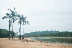 Some beautiful beside the river. It's some beautiful beside the river。I hope you will like it royalty free stock image
