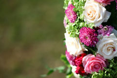 Some beautiful roses Royalty Free Stock Images