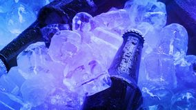 Beers On Pile Of Ice In Club Lights. Some beers chilled on ice in ambient colored lights stock video
