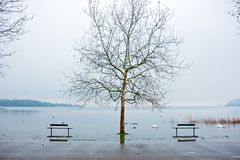 Some benches in the park, by the lake. Are submerged by water on a winter day Stock Images