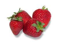 Some berries ripe strawberries. On white background royalty free stock images