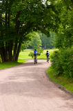 Some bicyclists on the park track. Some bicyclists on the sandy track in park royalty free stock image