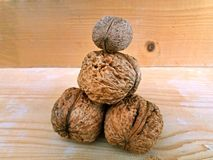 Some big walnuts on a wood background. Large walnuts on a wood background, one above the other royalty free stock image