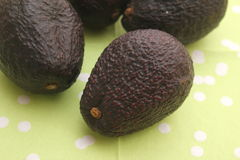 Black Avocado. Some black avocado for making a mexican guacamole stock image