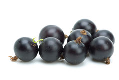 Some blackcurrants royalty free stock images