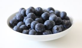 Some blueberries on a plate. Some blueberries on a white plate Royalty Free Stock Photo