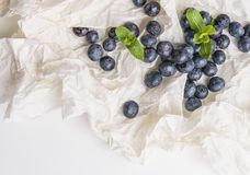 Blueberries in white paper with mint Royalty Free Stock Photography