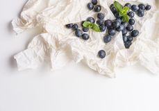 Blueberries in white paper with mint Stock Photo