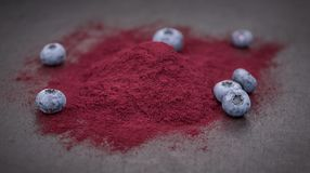 Some Blueberry Powder on a dark slate slab. Portion of Blueberry Powder on a rustic slate slab, selective focus, close-up shot Royalty Free Stock Image