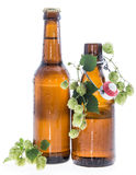 Some bottles of Beer with Hops on white Stock Photography