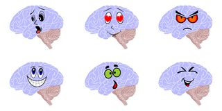 Some brains Royalty Free Stock Image