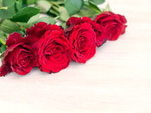 Some bright red roses. On a white wooden table Stock Images