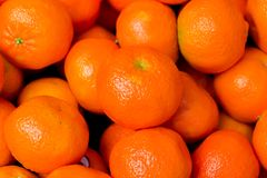 Some brillant oranges. Background of many oranges fruit Royalty Free Stock Image