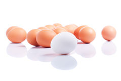 Some brown eggs one white egg in the foreground on a white isola Stock Photos