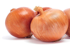 Onions. Some brown onions on a white background Royalty Free Stock Image