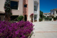 Some building with luxury boutiques in a pedestrian square of Porto Cervo. Some building with luxury boutiques in a pedestrian square full of purple flowers in Royalty Free Stock Photo